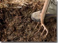 Umsetzen ist notwendig, wenn Kompost zu nass ist