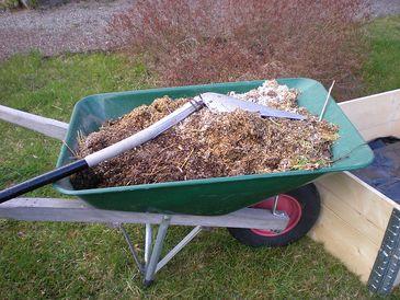 Kompostieren für Anfänger